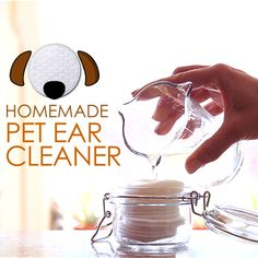 DIY: Ear Cleaner for Pets by Dr. Clean Cat Ears, Diy Cat Ears, Dog Ear Wash, Diy Dog Wash, Cleaning Dogs Ears, Dog Cleaning, Cleaning Tips, Dog Ear Cleaning Solution, Animals