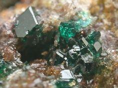 Herbertsmithite(ハーバートスミス石)