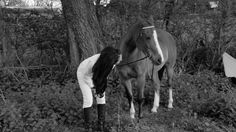#horses #countryside #photography