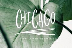 Chicago | A Handwritten Typeface by Jen Wagner Co on @creativemarket