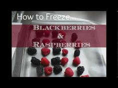 Pinner Says: WOW! Here's the super simple to steps on How to Freeze Raspberries and How to Freeze Blackberries! This one minute video will surprise you.