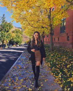 Aspen in the Fall Pt.1 - Hapa Time