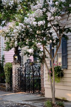 Historic Charleston, South Carolina | homeiswheretheboatis.net