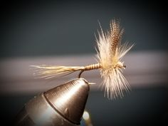 Quill Gordon Dry Fly.  Super heavy hackle for faster water.