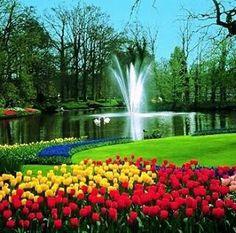 El jardín de Europa: jardín Keukenhof Holanda