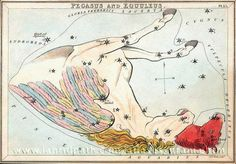 """The constellation Equuleus peeking out from behind Pegasus, as depicted in Urania's Mirror. Equuleus the colt may be the brother or the son of Pegasus - traditions vary. Mona Evans, """"Cosmic Equines"""" http://www.bellaonline.com/articles/art183463.asp"""