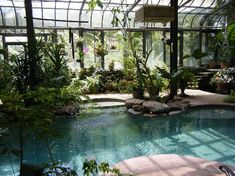 Pool in a greenhouse..this would solve all my problems! Lol. Well, maybe not ALL..but definitely A LOT of them! Lol