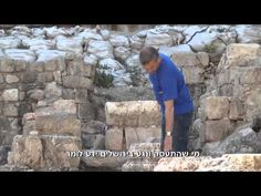 שרידי קרפדות ערופות ראש בקנקן ועדויות לגידול תמר והדס התגלו בקבר מלפני 4,000 שנה - YouTube