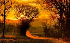 Sunrise via Classy Bro Beautiful Landscape Images, Landscape Photos, Beautiful Images, Landscape Photography, Sunrise Wallpaper, Nature Music, Forest Fairy, High Quality Wallpapers, Beautiful Sunrise