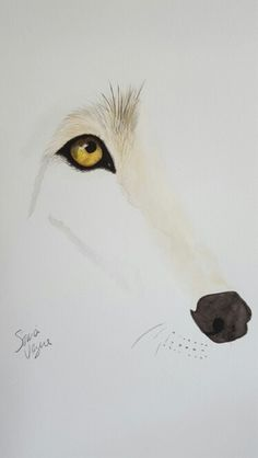 Watercolor wolf for sale. Contact at soniashorizons@gmail.com