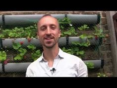 Feeding Your Plants for Free - How to Make Fertilizer for Your Vegetable Garden - YouTube