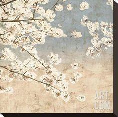 Cherry Blossoms II Stretched Canvas Print by John Seba at Art.com