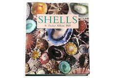 Shells on OneKingsLane.com