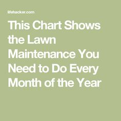 This Chart Shows the Lawn Maintenance You Need to Do Every Month of the Year