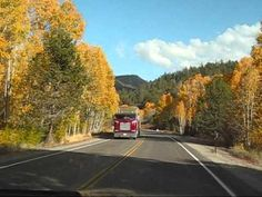 VIDEO, click to PLAY...   Fall Autumn Season Drive in Northern California USA.   #ca #california #fall #autumn #trees #winter #road #trip #travel #usa #america
