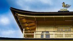 #kinkakuji #temple #goldentemple #kyoto #japan #japanimpressions #金閣寺 #京都 #日本 #sonya7 #sony90mm https://t.co/p7rnvS64u5 https://t.co/0Oys2WMFdS