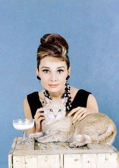 Audrey Hepburn & Orangey, the tabby