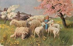 Easter Parade, Nursery Rhymes, Pretty Pictures, Farm Animals, Blue Dresses, Sheep, Goats, Camel, Mini
