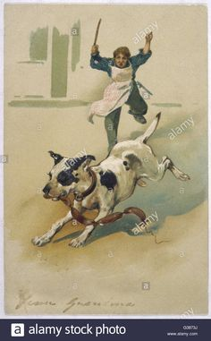 A dog runs off with a string  of sausages with the butcher  boy in pursuit        Date: 1905 Stock Photo