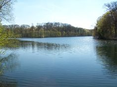 Étang du Moulin à Renard. Moulin à Renard Pond. (Moulin à Renard = Fox Mill)