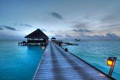 المالديف~