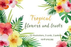 Tropical flowers and leaves.