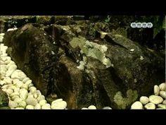 삼족오, 고대 한류를 밝히다 - 1부 삼족오, 한민족의 코드로 부활하다 (3/4)