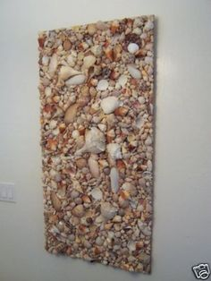 Seashell Collage 2 ft x 4 ft
