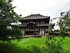 Largest wooden structure in the world. Japan Trip, Japan Travel, Nara, Kyoto, Playground, Gazebo, Temple, Golf Courses, Tokyo