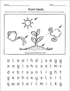 what do plants need to grow activity worksheet for children science worksheets for elementary. Black Bedroom Furniture Sets. Home Design Ideas
