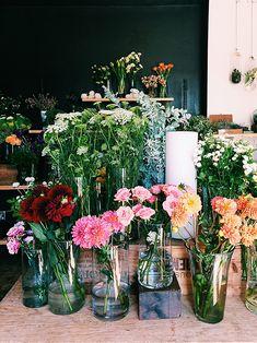 clementine floral studio / silverlake