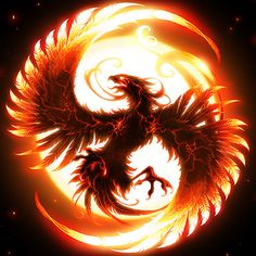 Enjoy new and latest pictures of Phoenix Bird Wallpapers. We will try to bring the best for Phoenix Bird Wallpapers and Pictures. Phoenix Rising, Dark Phoenix, Phoenix Bird, Phoenix Wings, Phoenix Xmen, Phoenix Artwork, Phoenix Wallpaper, Phoenix Images, Hd Wallpaper