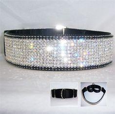 Midnight Martingale 2 inch collar