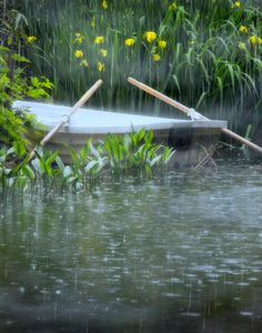 Rain day on a pond. Sound Of Rain, Singing In The Rain, Smell Of Rain, I Love Rain, Rain Go Away, Rain Days, Rain Storm, Rain Photography, Going To Rain