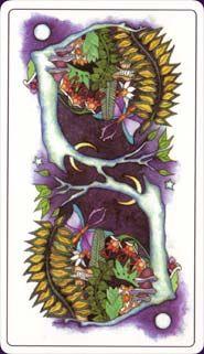 Tarot of a Moon Garden Shop online : www.myaspaces.com