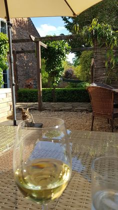 Country Living, Alcoholic Drinks, Relax, Wine, London, Glass, Garden, Country Life, Garten