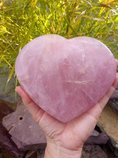 Natural Healing, Crystal Healing, Make Me Happy Quotes, Rose Quartz Heart, Out Of My Mind, Unique Animals, Crystals Minerals, Ancient Egypt, Gemstones