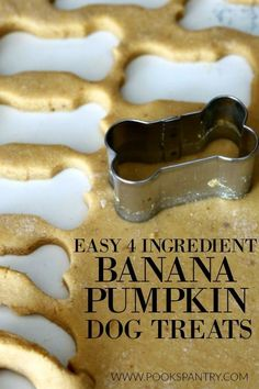 Pumpkin Dog Treats are a big hit and making this homemade version is super simple. Making homemade treats is easy, less expensive than store-bought and you can customize them to your dogs personal tastes. Easy, home banana pumpkin dog treats. Puppy Treats, Diy Dog Treats, Healthy Dog Treats, Frozen Dog Treats, Good Dog Treats, Treats For Puppies, Homemade Dog Cookies, Homemade Dog Food, Pumpkin Dog Treats Homemade
