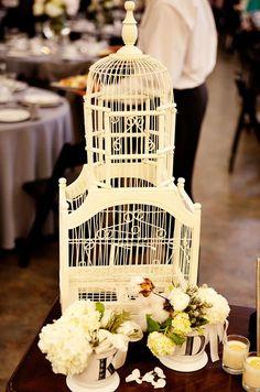 love bird cages