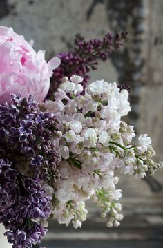 lilacs and peonies ~ lovely cut flower combination