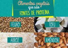 Conheça outros alimentos vegetais que são fontes de proteína!