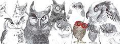 OWLS by krisztiballa #krisztiballa #illustration #ballpointpen #linework #bw #owl #animalillustration