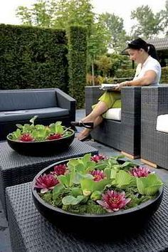 Container Water Gardens - Container water gardens and features plus small space landscaping Small Water Gardens, Container Water Gardens, Indoor Water Garden, Small Space Gardening, Back Gardens, Container Gardening, Outdoor Gardens, Balcony Gardening, Zen Garden Design
