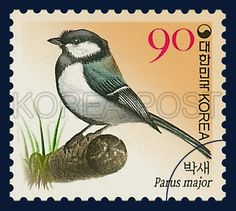Definitive Postage Stamp (90won), great tit, Bird, Orange, 2006 06 05, 보통우표(90원권), 2006년 6월 5일, 2494, 박새, postage 우표