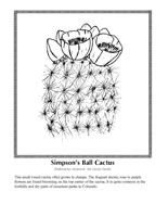 invasive species coloring pages - photo#49