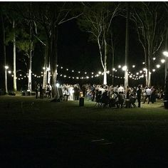 Reception was magical thanks to stylists Avideas