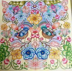 #animalkingdom #adultcoloring #milliemarotta