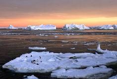 Un nuevo estudio confirma que el deshielo de los glaciares, un proceso que forma parte del calentamiento global, aumenta el nivel del mar en la Antartida mucho mas rápido que en los otros oceanos del mundo. La observación de la Antártida en las dos últimas décadas revela que el descongelamiento de los glaciares provocó un […]