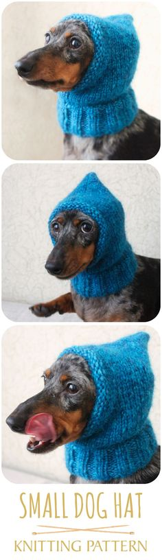 Check out this adorable knitting pattern for a dog hat! #doghat #smalldoghat #smalldog #dachshund #doxie #knittingpattern #dogcothes