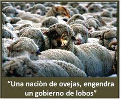 Una nación de ovejas somos...